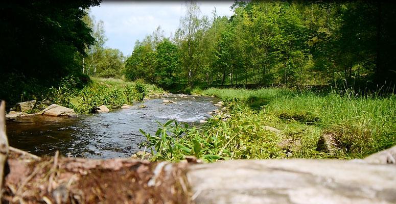 Idyllische Flusslandschaft