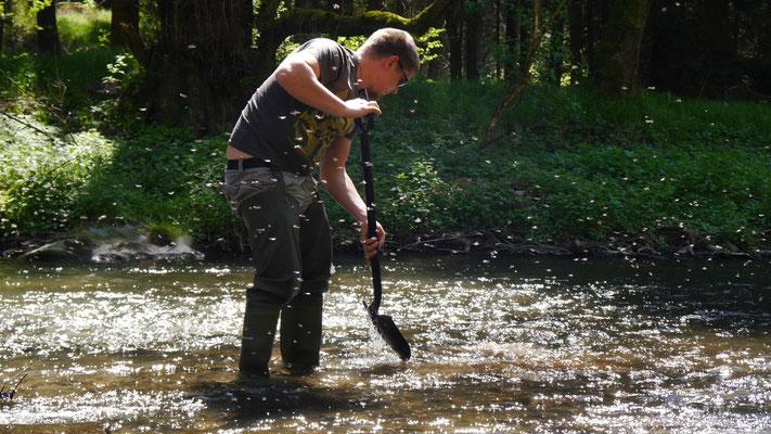 Mosquitos am Fluss im Sommer, Mann im Hintergrund schaufelt