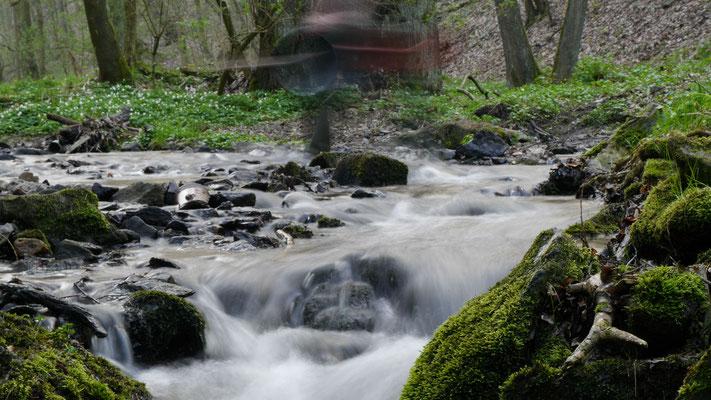 Langzeitbelichtung Bach Wasserlauf