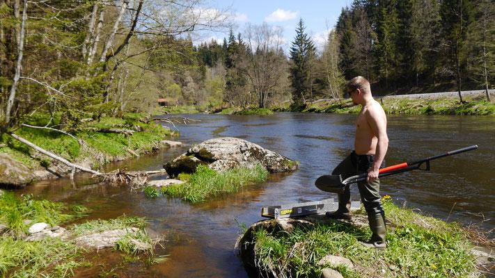 Goldwäscher steht heroisch am Fluss