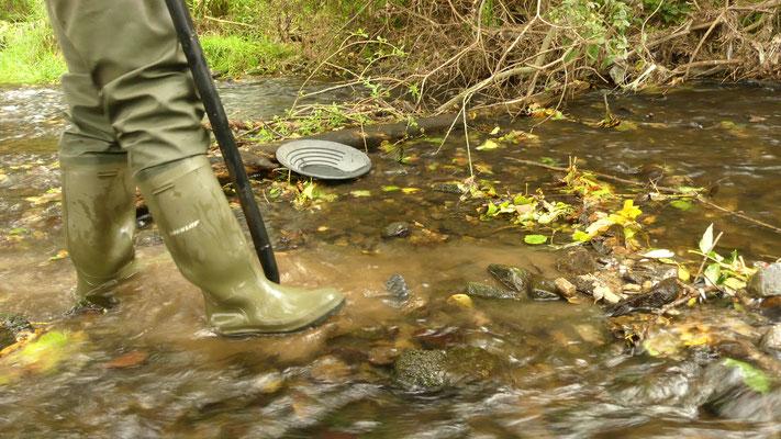 Graben nach Gold in Fluss, mit Schaufel und Goldwaschpfanne