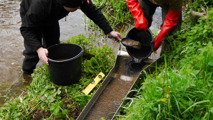 Goldwaschrinne wird mit Eimer betrieben