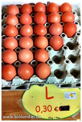 Bioland-Eier, direkt vom Hof, Größe L