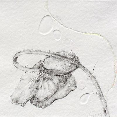 Erwachen-Bleistift,Prägung-2014-20x20cm