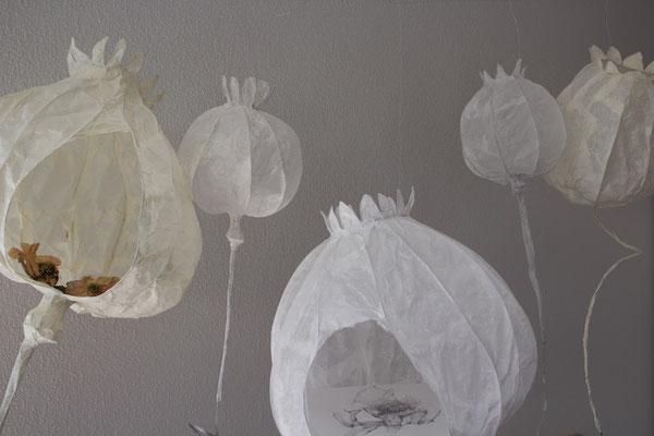 Herberge-Draht,Papier,getrocknete Mohnblumen,Bleistiftzeichnung auf Transparentpapier-2016