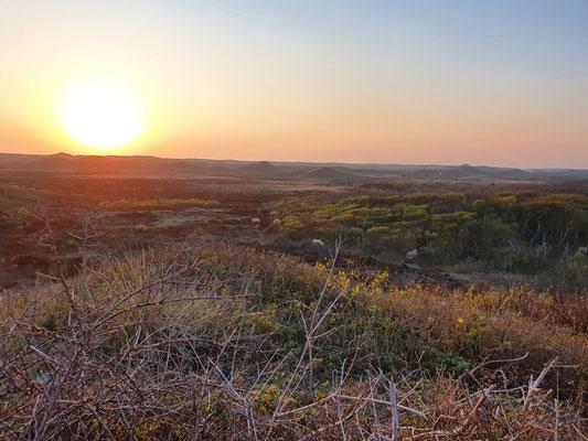 Sundown hinter den Dünen von Texel