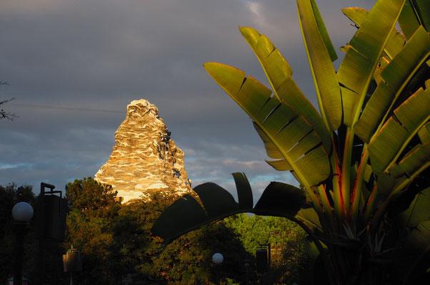 Matterhorn mit Palmen!
