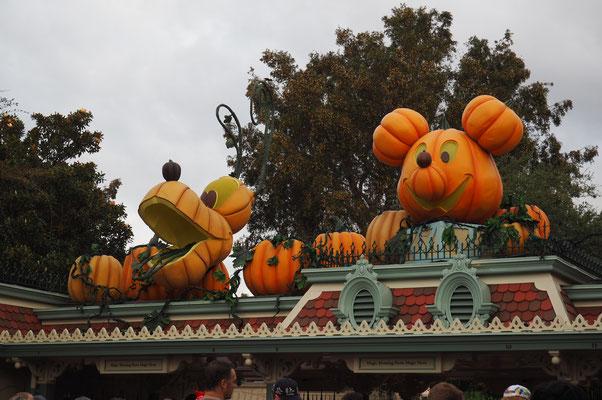 die letzte Halloweendeko!