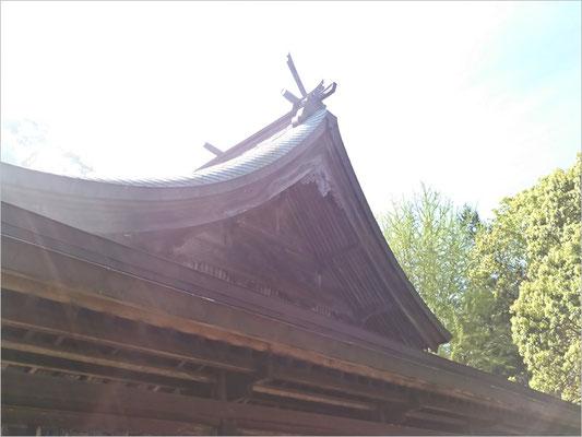 與止日女神社本殿東側の写真