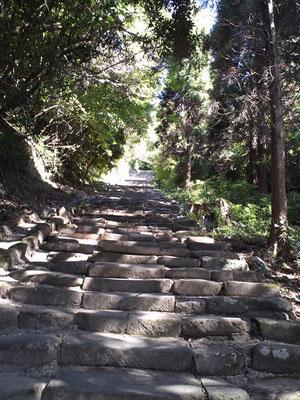 鵜戸神宮へ向かう八丁坂参道の写真