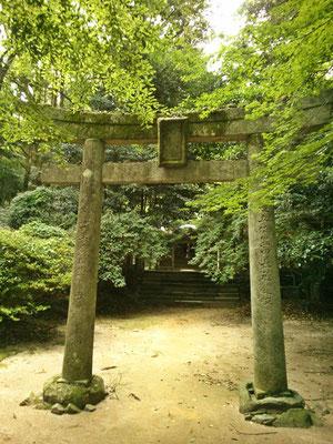 垂裕神社鳥居02番の写真