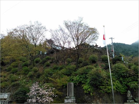 陶山神社駐車場から拝殿を撮影した写真