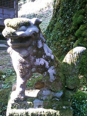 後鳥羽神社拝殿前の狛犬阿形の写真