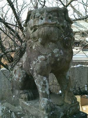 宮地嶽神社境内の狛犬吽形の写真
