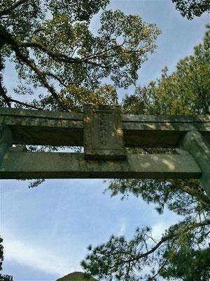宮地嶽神社鳥居02番の写真