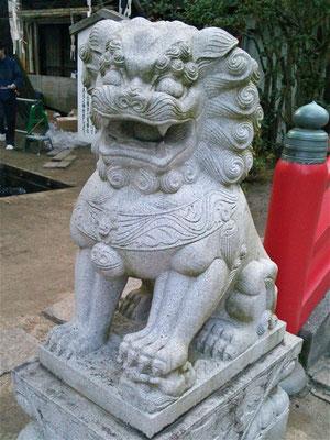 赤間神宮の狛犬吽形の写真