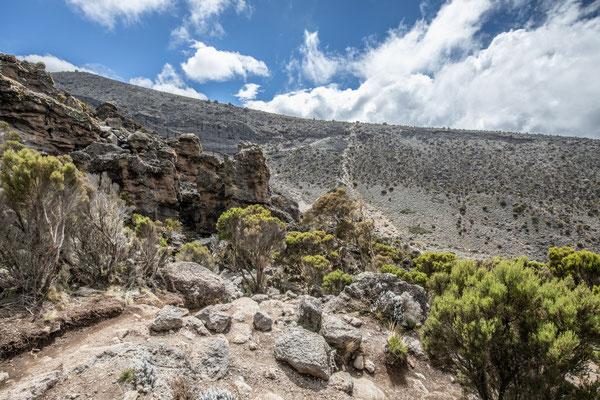 der steile Schlussanstieg vor dem Karanga-Camp (am Hang gegenüber)