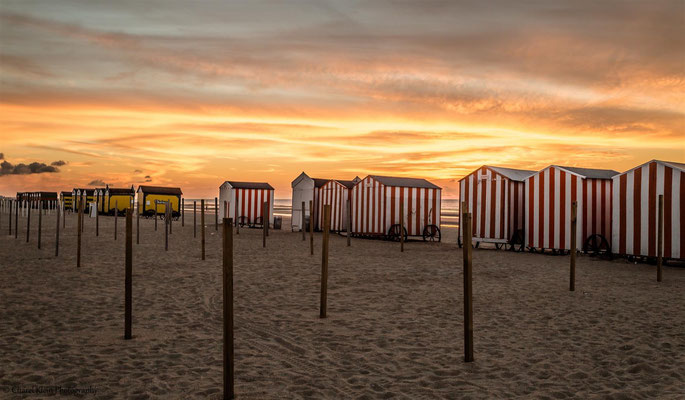 Roadtrip 2014  -- De Panne