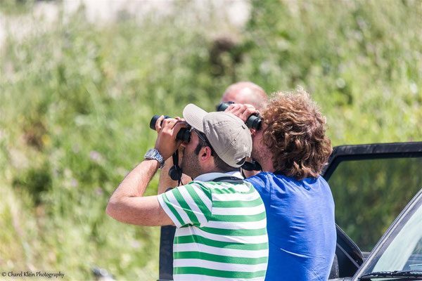 During the birding trip in Turkey