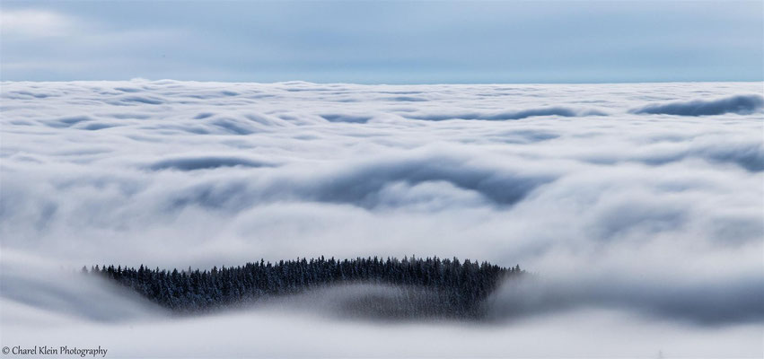 Inversion -- Freiburg im Breisgau / Germany -- January 2015