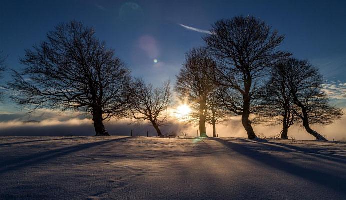 Inversion -- Freiburg im Breisgau / Germany -- January 2015