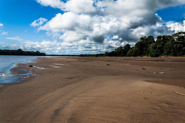 peruvian rainforest beach -- Peru / Centro De Rescate Taricaya