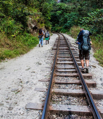 Machu Picchu way -- Peru / Centro De Rescate Taricaya