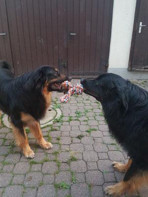 Cherockee und Bruder Bruno