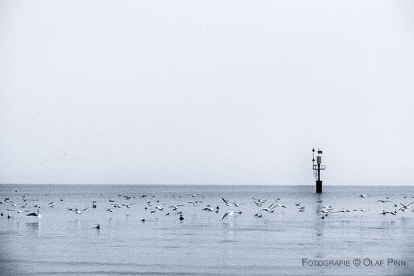 Olaf Pinn, Fotografie, Ostsee