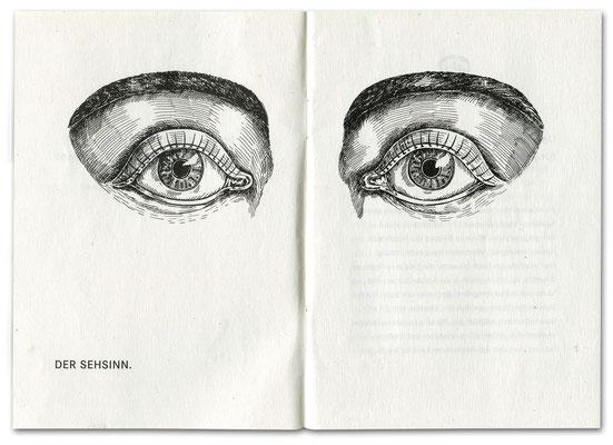 """Der Sehsinn Federzeichnung für Daimler Chrysler """"Die sechs Sinne"""" Broschüre Umweltschutz  © Caroline Ronnefeldt"""