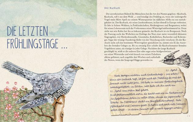 """Der Kuckuck aus """"Gartenglück und Sommerzauber"""" S.8/9"""