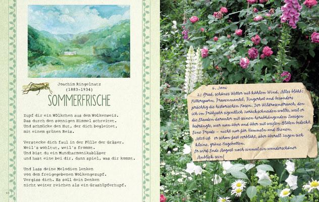 """Doppelseite """"Sommer"""" aus """"Gartenglück und Sommerzauber"""" © Caroline Ronnefeldt"""