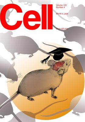 Coverentwurf für Cell Magazine Hirnforschung an Mäusen  © Caroline Ronnefeldt