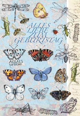 Geburtstagskarte Schmetterlinge + Insekten, Federzeichnung und Aquarell Caroline Ronnefeldt für Edition Tausendschön