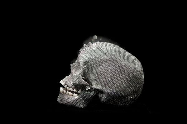 Damien Hirst's Skull, Florence
