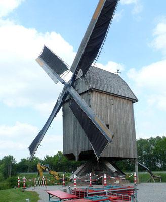 Bockwindmühle von Weseke