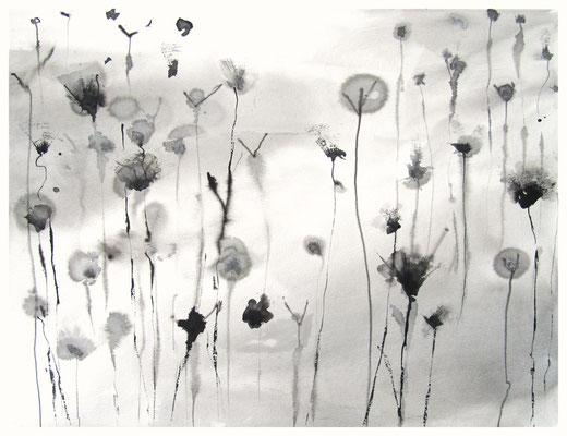 """""""Zeichnung Wiesenstück 1"""", Tusche auf Papier, 65 x 50 cm, 2015"""