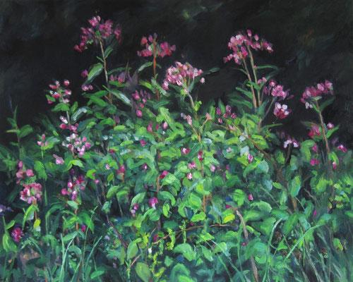 """""""Springkraut"""", Öl auf Leinwand, 100 x 80 cm, 2021"""
