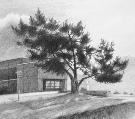"""""""Kiefer VoBü Fürth morgens"""", Bleistift auf Papier, 50 x44 cm, 2013"""