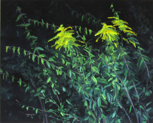 """Kanadische Goldrute 3"", Öl auf Leinwand, 100 x 80 cm, 2021"