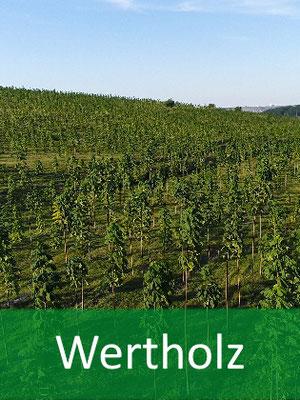 Wertholz