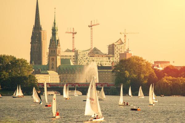 Die Hamburger Aussenalster mit Segelbooten und Blick auf Elphilharmonie, Rathaus und Nikolaikirche