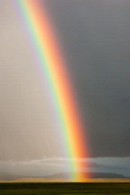 Island: ein Regenbogen trifft auf das Land