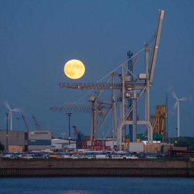 Aufgehender Mond zwischen den Verladekränen im Hamburger Hafen