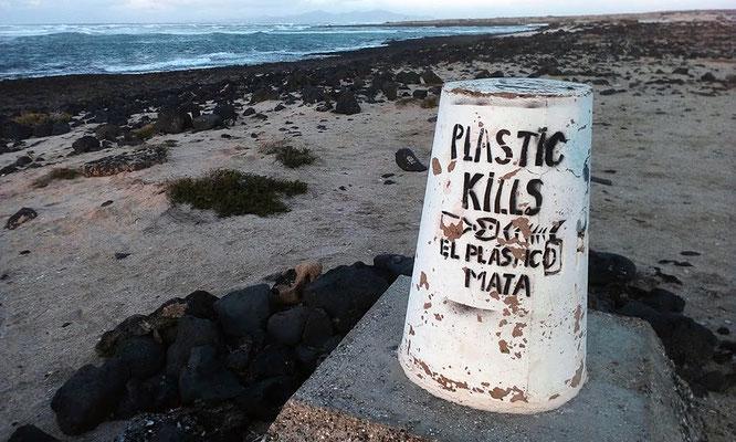 Fotoquelle: Foto: Seyferth Elisabeth | Fuerteventura