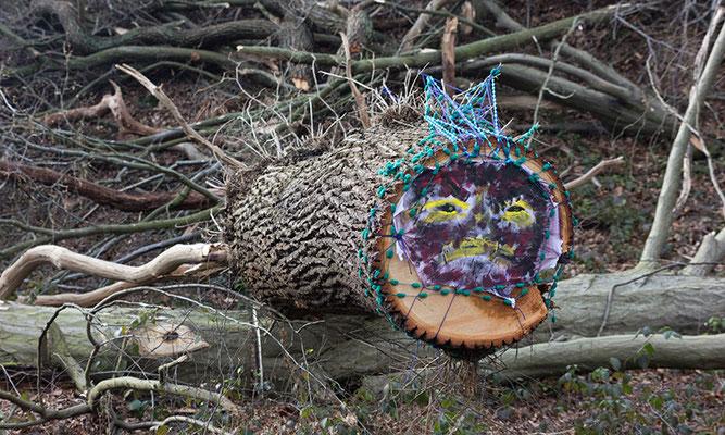 Fotoquelle: www.kingkalli.de