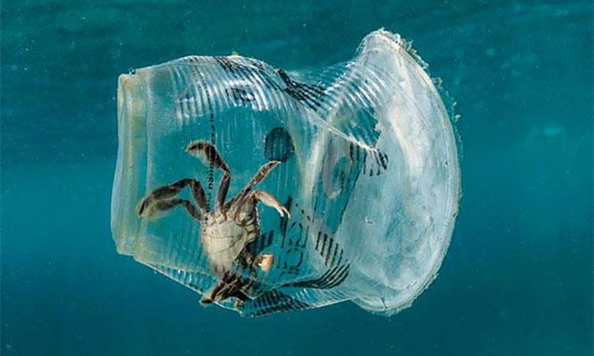 Fotoquelle: www.rethink-recycle.net | Noel Guevara | Greenpeace