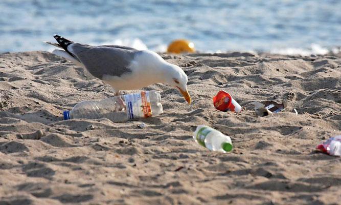 Fotoquelle: www.der-reporter.de