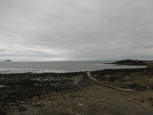 Küste 3