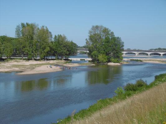 Naherholungsgebiet in der Flussmitte